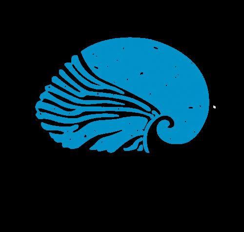 ΑΝΑΠΛΟΥΣ