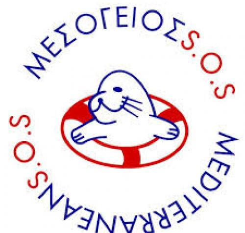 MEDITERRANEAN SOS NETWORK